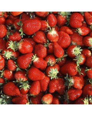 479px-chandler_strawberries.jpg