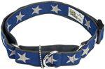 star-collar.jpg