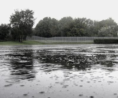 800px-raindrops.jpg