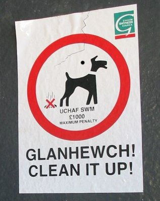 476px-caernarfon_dog_sign.jpg