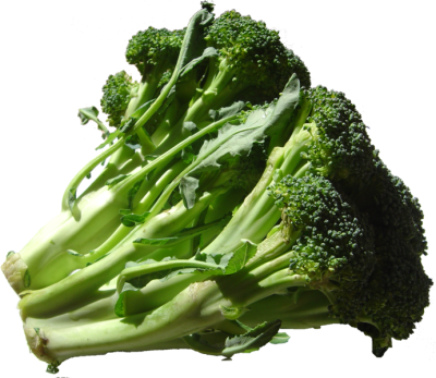 691px-broccoli_dsc00862.png