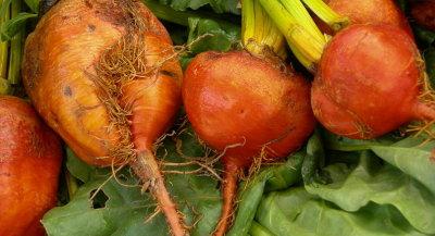800px-red-orange_root_vegetable_01.jpg